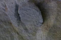 isp_oe_abs_rock_heart