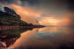 isp_oe_ls_morning_mist