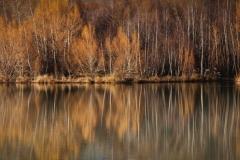 isp_oe_ls_winter_reflection