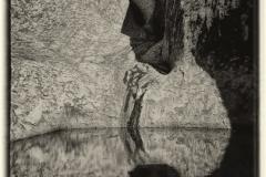 isp_oe_mono_waterhole