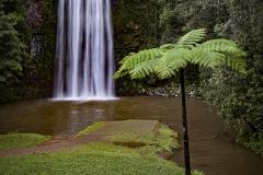isp_ssa_millaa_millaa_falls